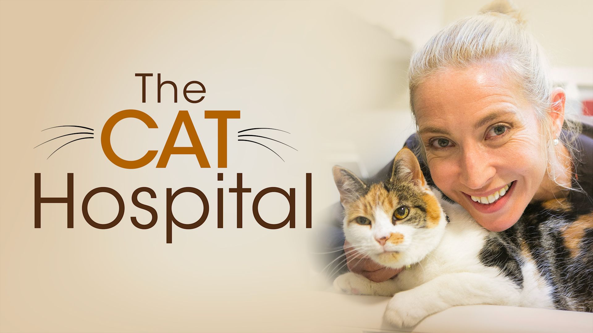 Cat Hospital - Series 1