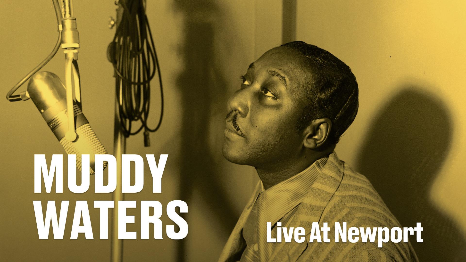 Muddy Waters - Live in Newport 1960