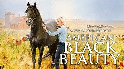 American Black Beauty