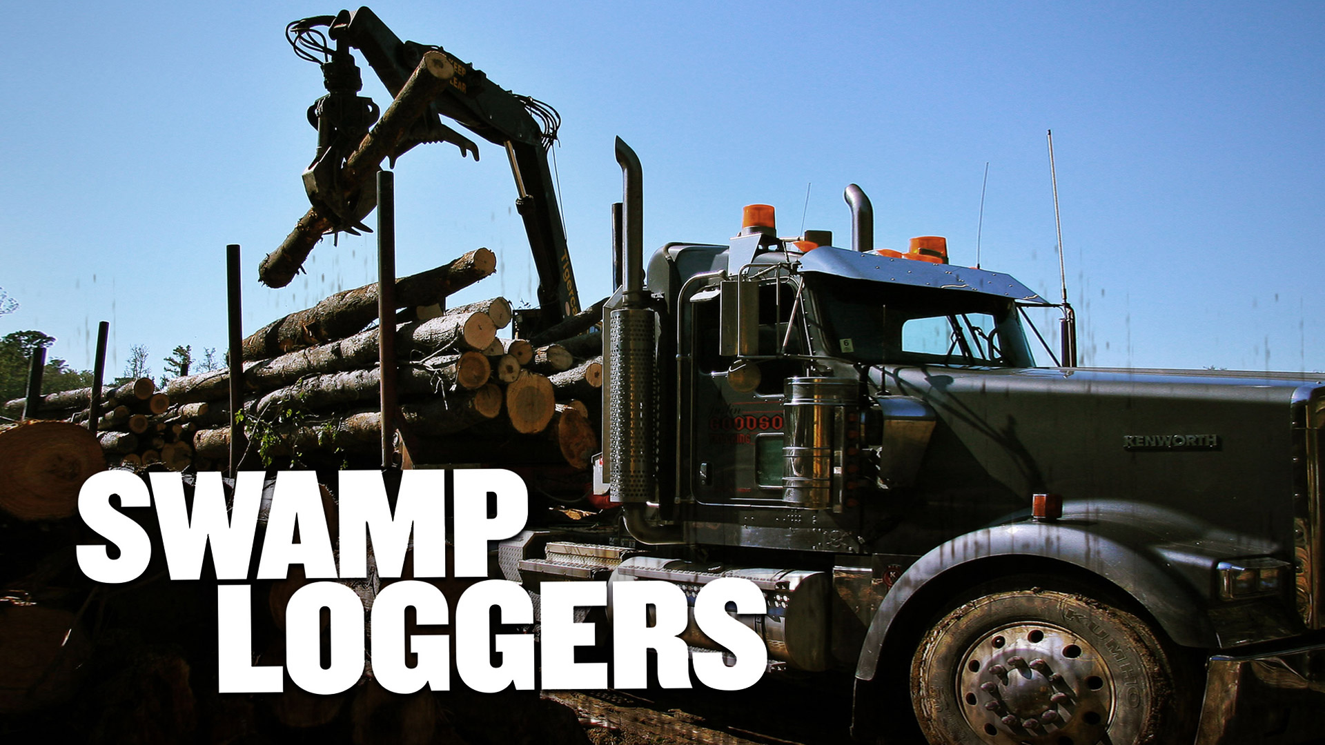Swamp Loggers - Season 1