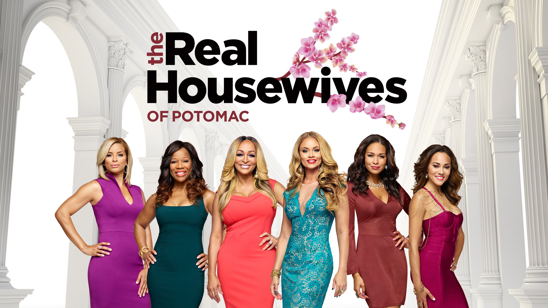 The Real Housewives of Potomac, Season 1