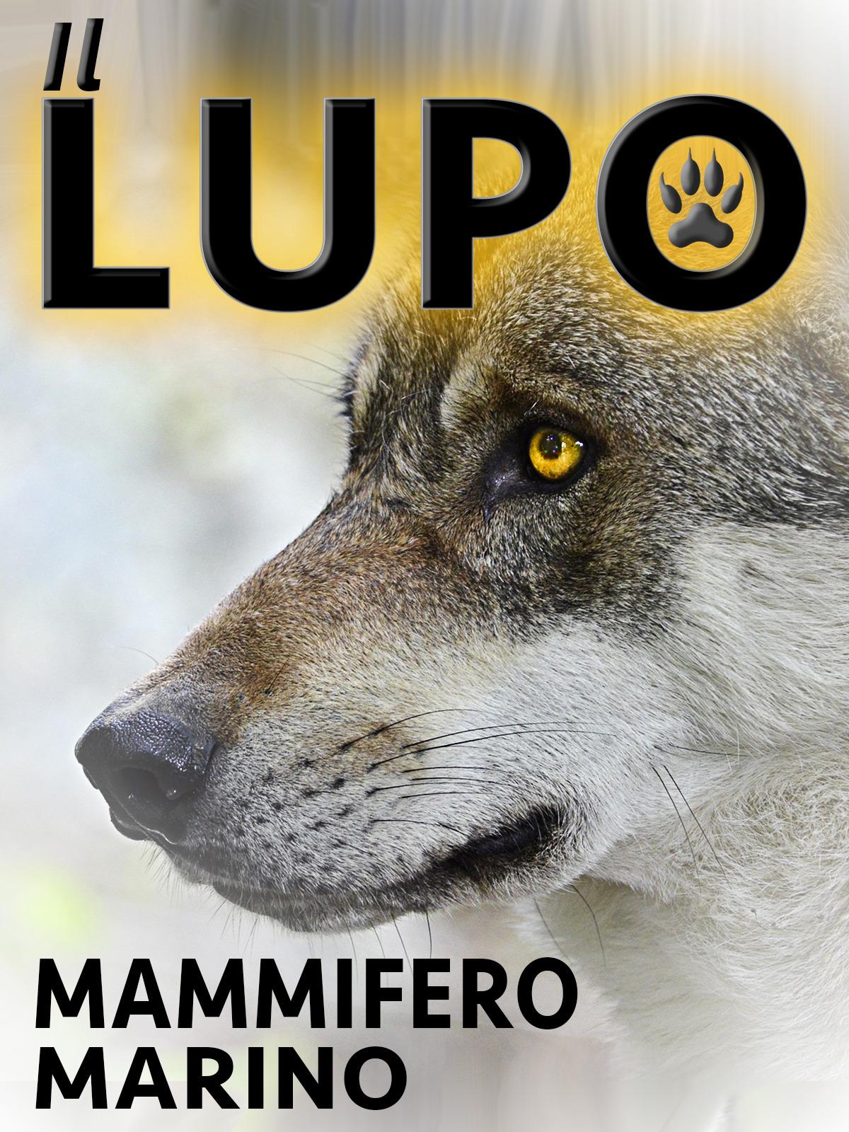 Il Lupo Mammifero Marino - Prime Video