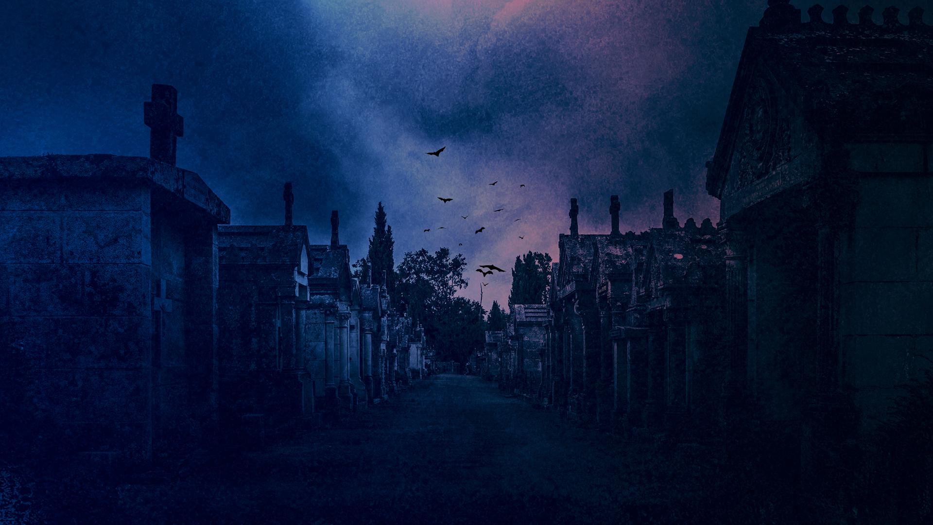 Nest Of Vampires