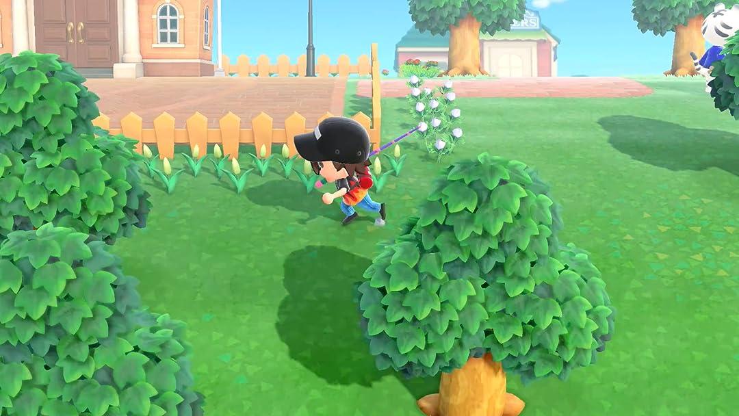 Clip: Animal Crossing New Horizons Gameplay - Zebra Gamer - Season 3