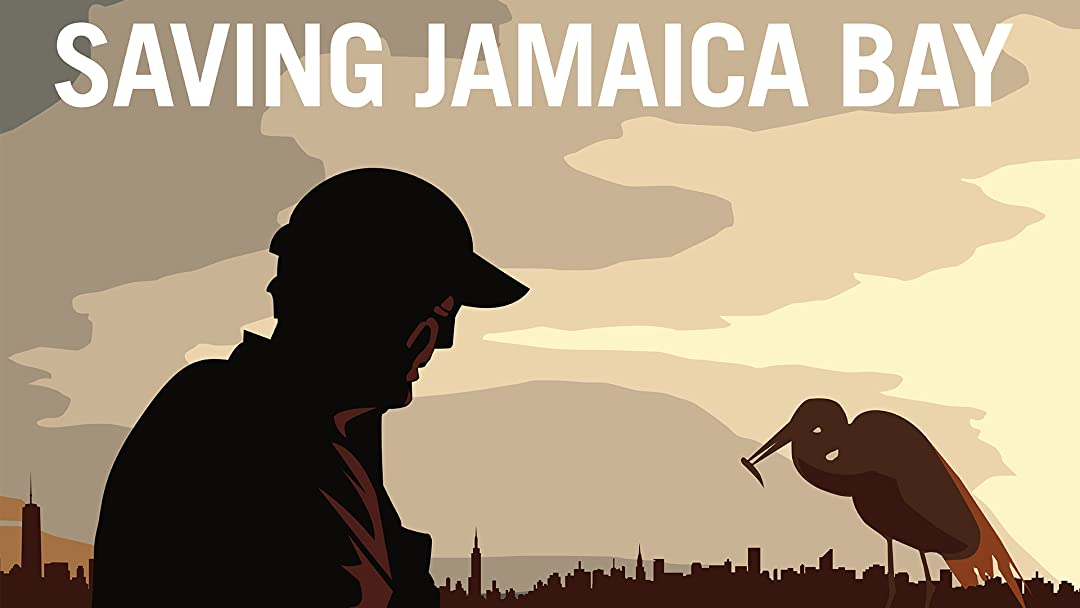 Saving Jamaica Bay