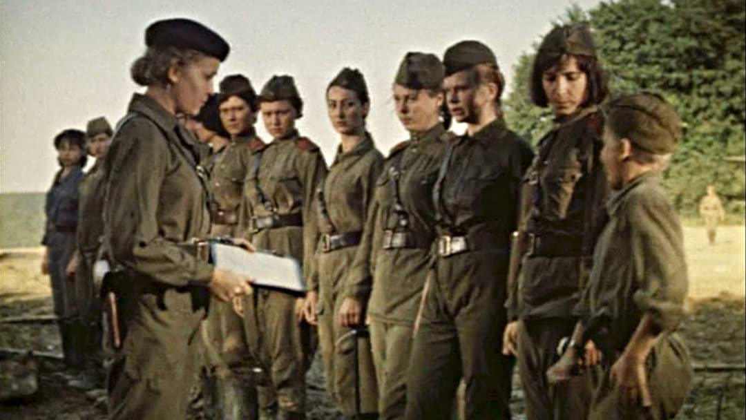 Night Witches in the Sky