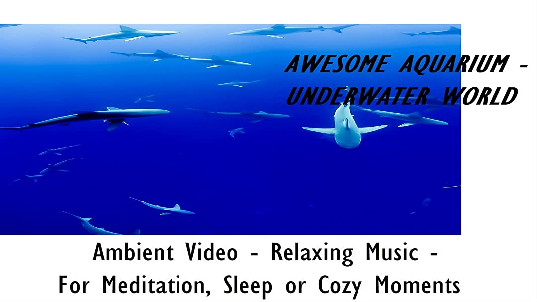 Awesome Aquarium - Underwater World - Ambient Video - Relaxing Music - For Meditiation, Sleep or Cozy Moments on Amazon Prime Video UK
