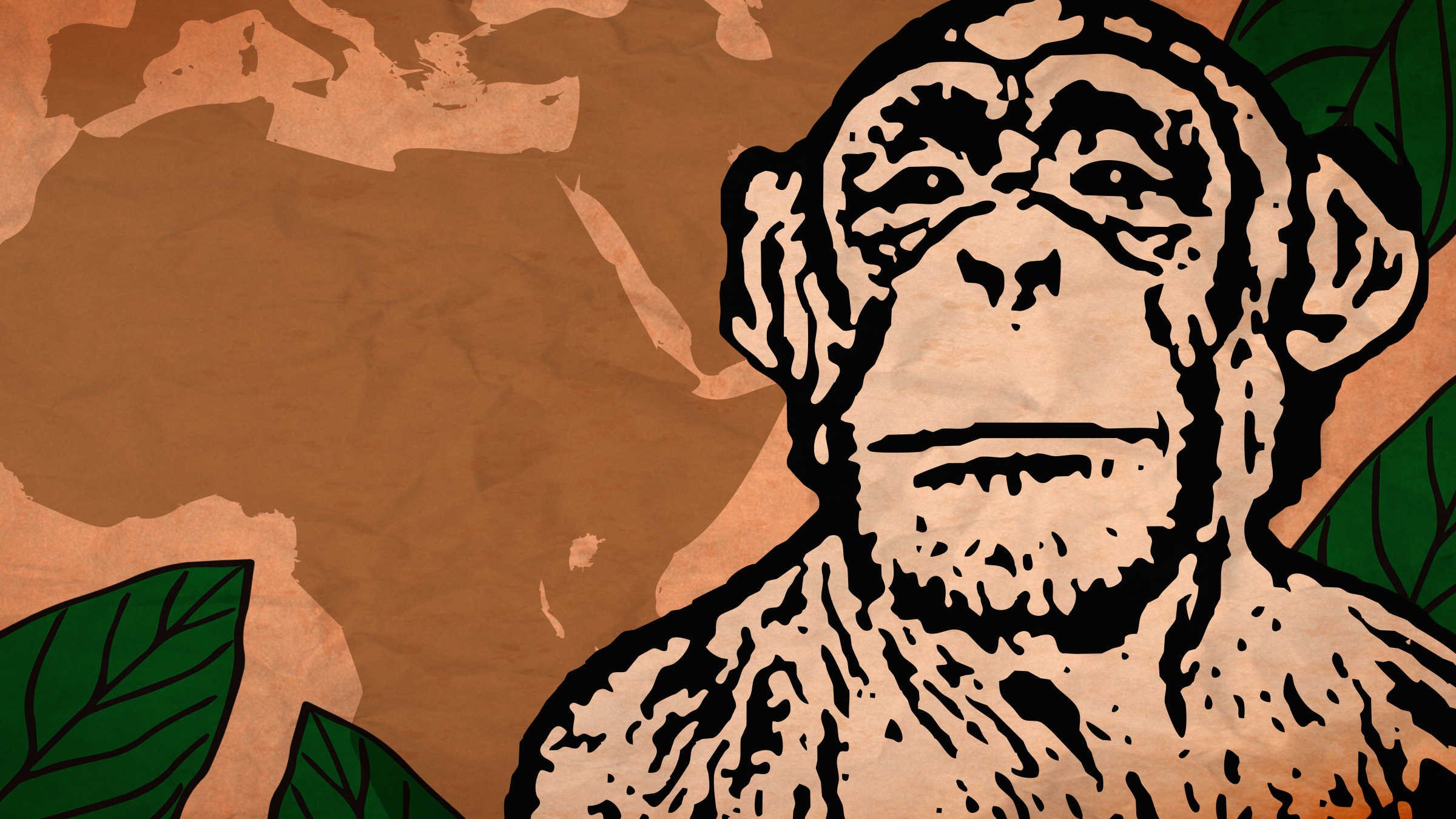 Cousin Bonobo on Amazon Prime Video UK
