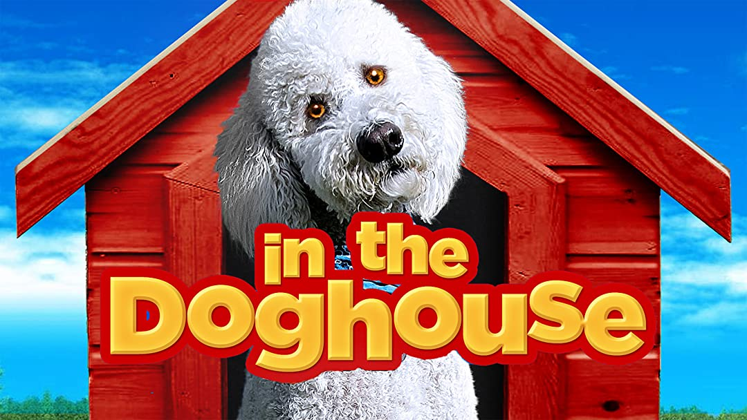 In the Dog House on Amazon Prime Video UK
