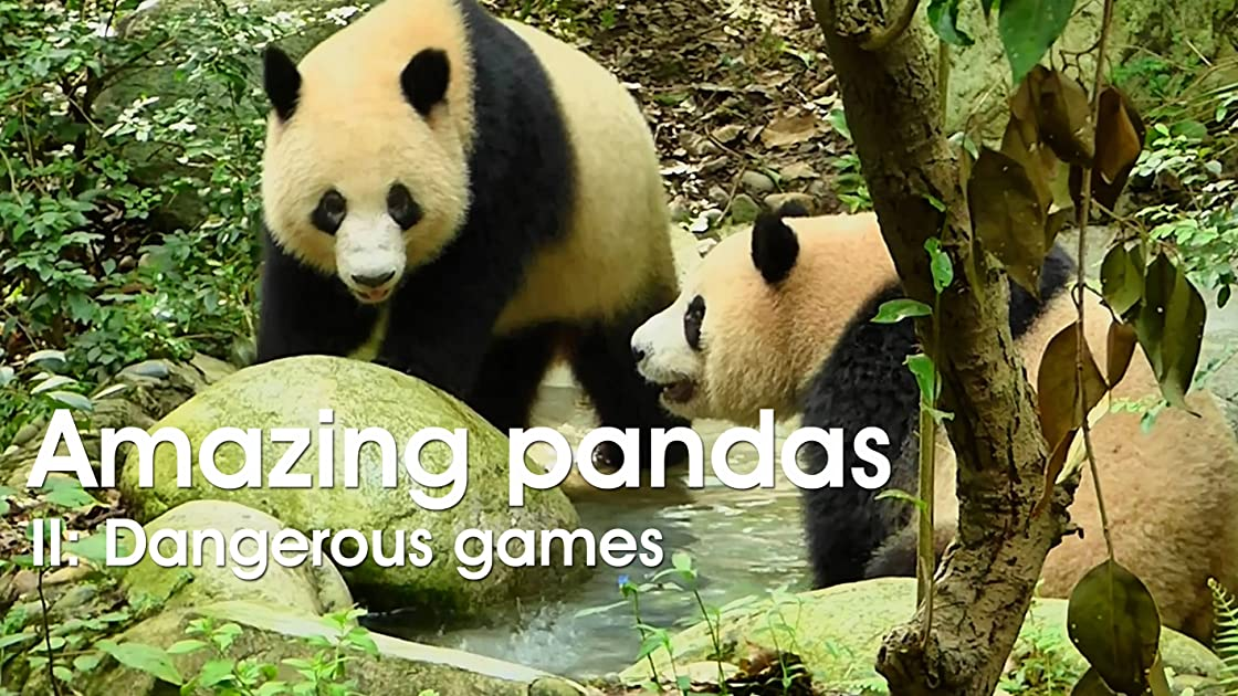 Amazing pandas. II. Dangerous games on Amazon Prime Video UK