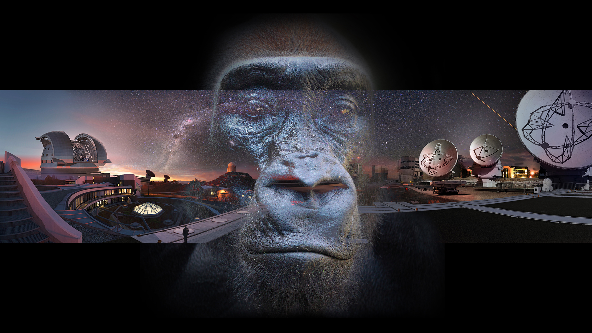 Biosphere Continuum on Amazon Prime Video UK