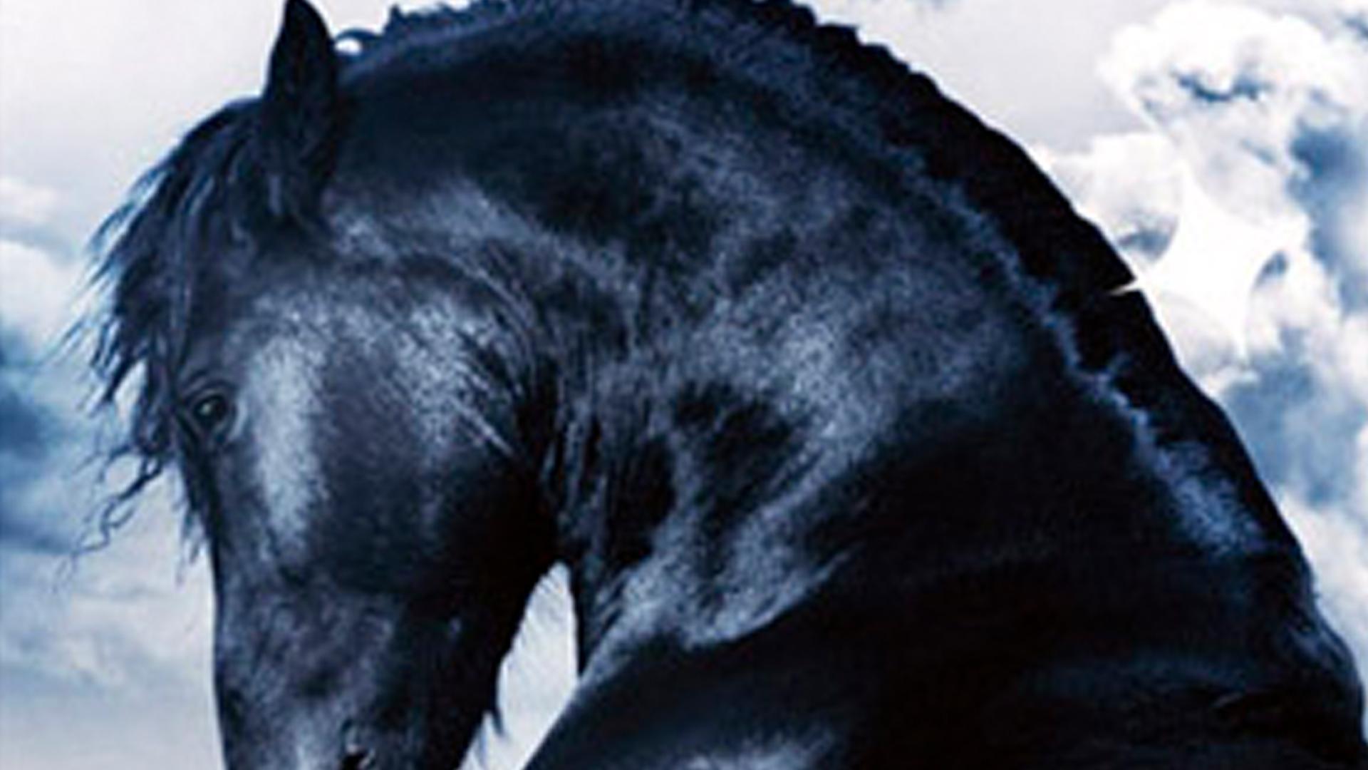 The Dark Horse on Amazon Prime Video UK