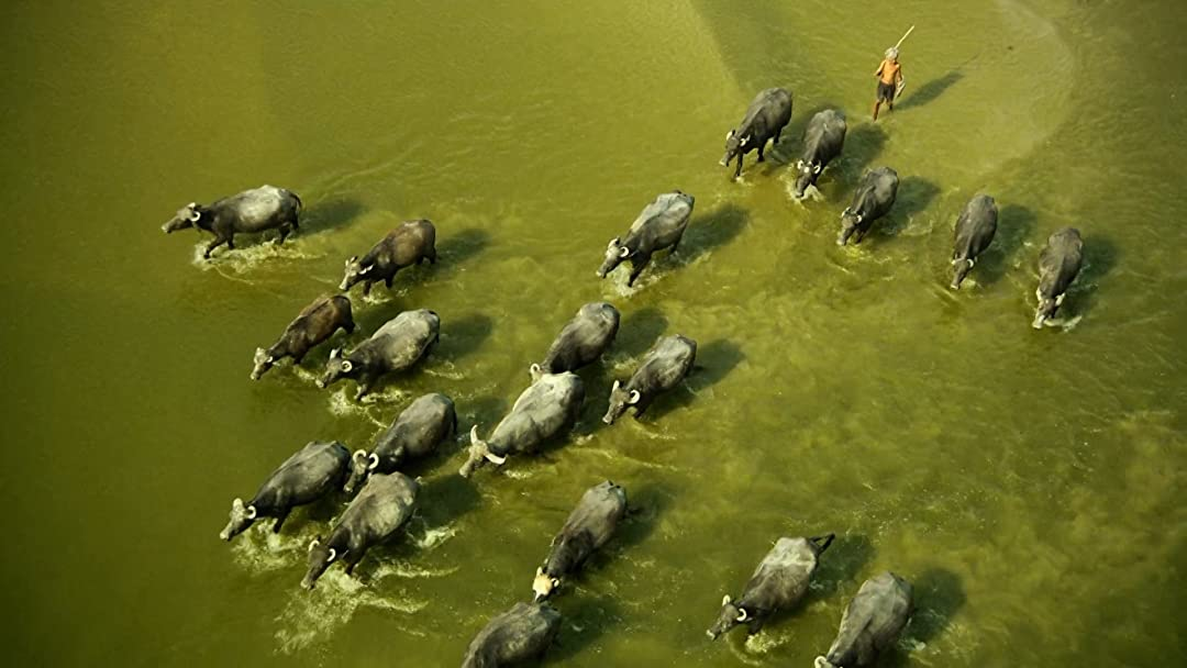 Ganges, A Journey Through The Senses Of Water on Amazon Prime Instant Video UK