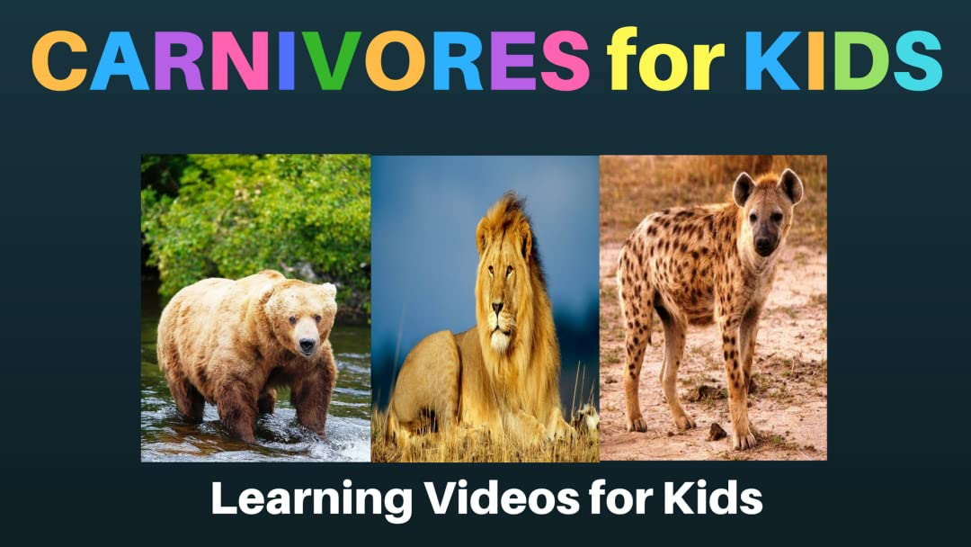 Carnivores for Kids: Learning Videos for Kids on Amazon Prime Video UK