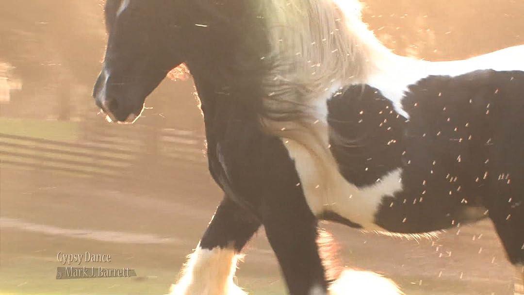 Horse of the Gypsies on Amazon Prime Video UK