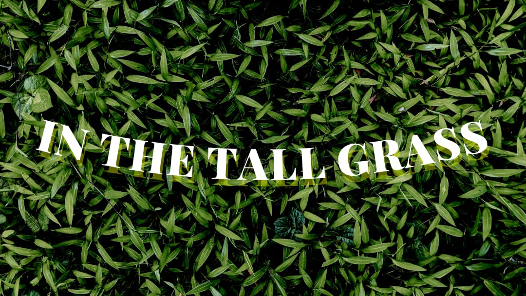 In The Tall Grass on Amazon Prime Video UK