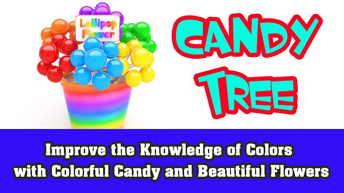 Improve the Knowledge of Colors with Colorful Candy and Beautiful Flowers