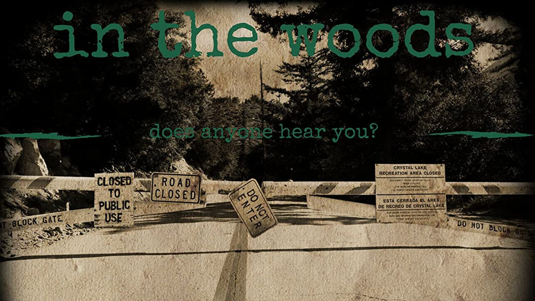 In The Woods on Amazon Prime Video UK