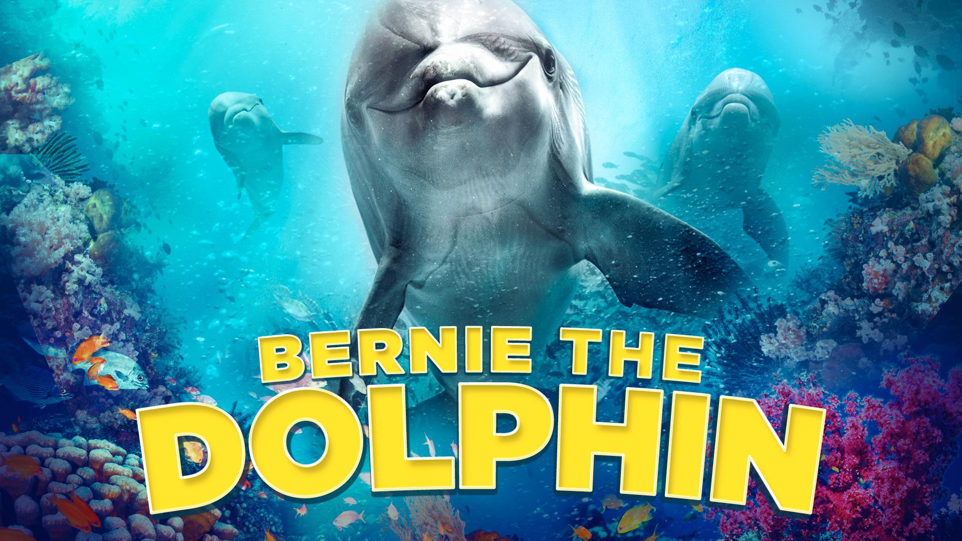 Bernie The Dolphin on Amazon Prime Video UK