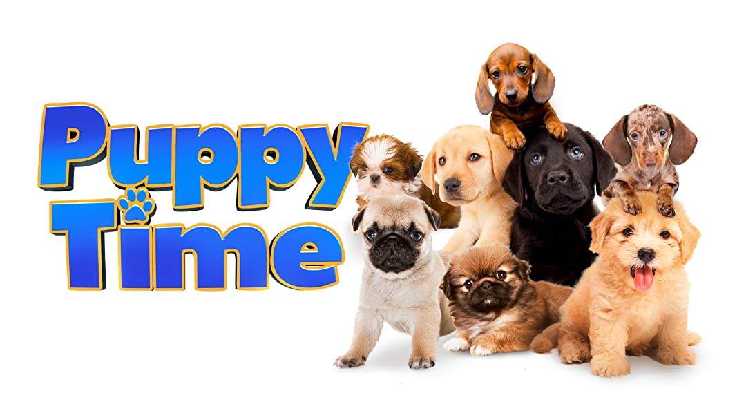 Puppy Time on Amazon Prime Video UK
