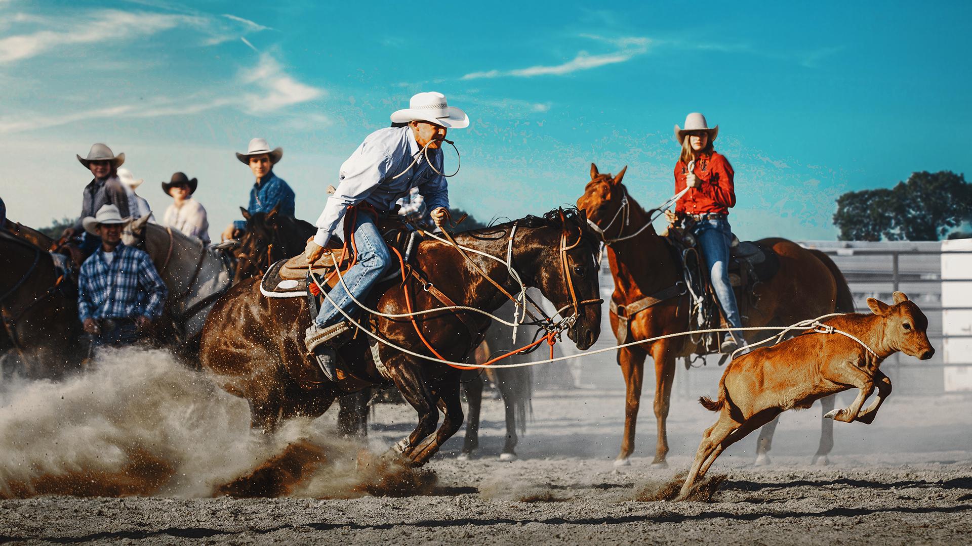 Ultimate Cowboy Showdown - Season 1
