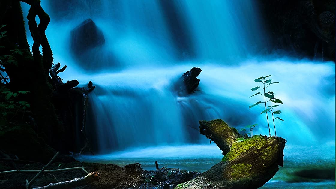 Water Life - Season 1