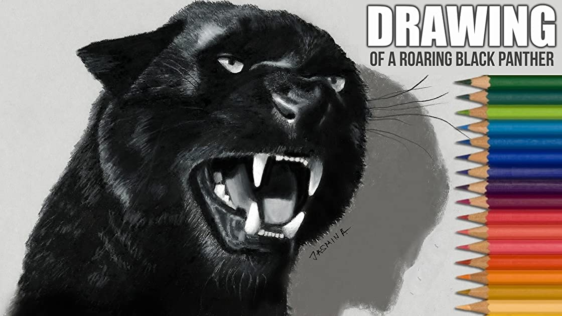 Drawing of a Roaring Black Panther