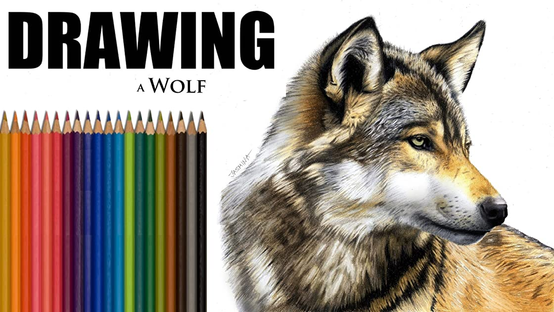 Clip: Drawing of a Wolf