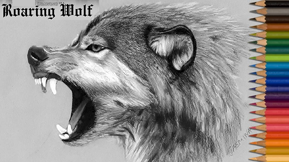 Drawing of a Roaring Wolf