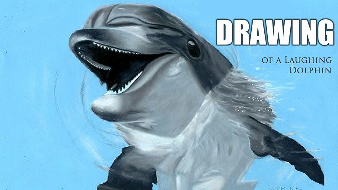 Clip: Drawing of a Laughing Dolphin