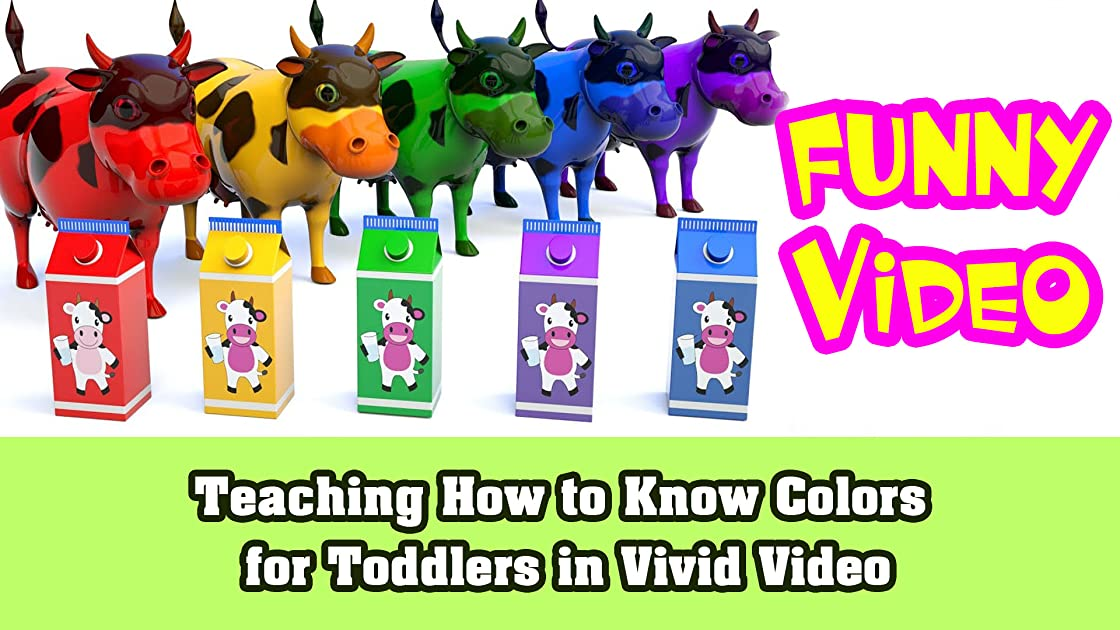 Teaching How to Know Colors for Toddlers in Vivid Video