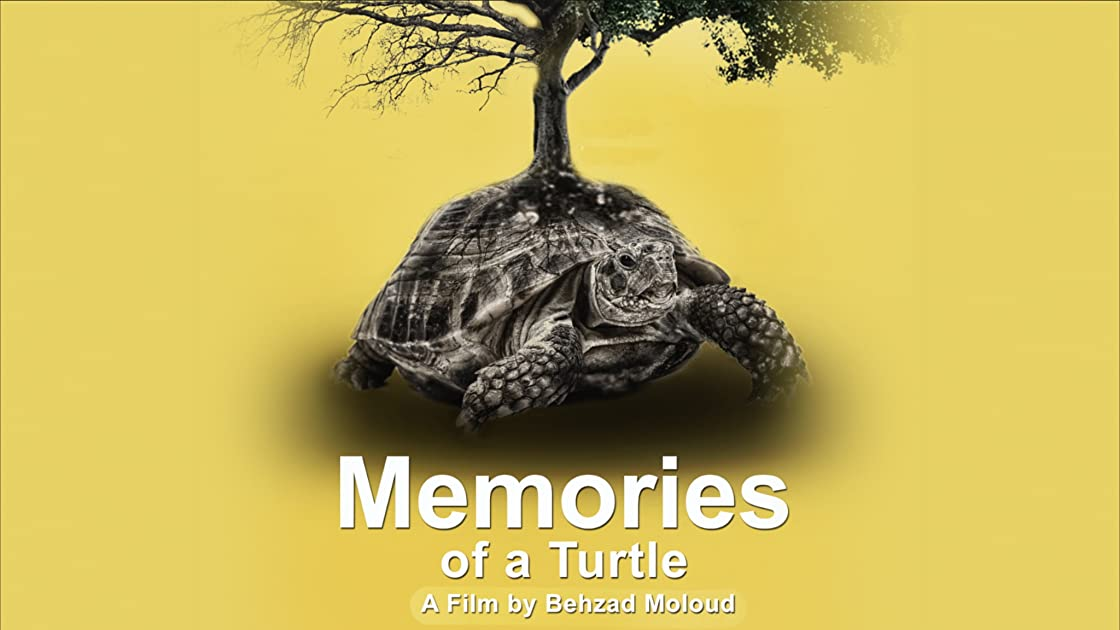 Memories of a Turtle on Amazon Prime Video UK