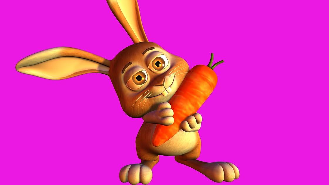 Bunnies jump around on Amazon Prime Video UK