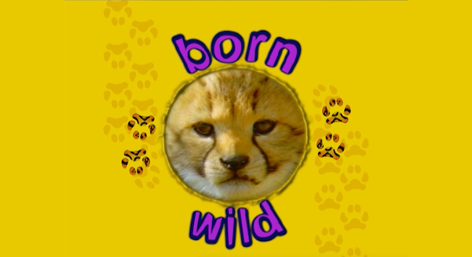 Born Wild on Amazon Prime Video UK