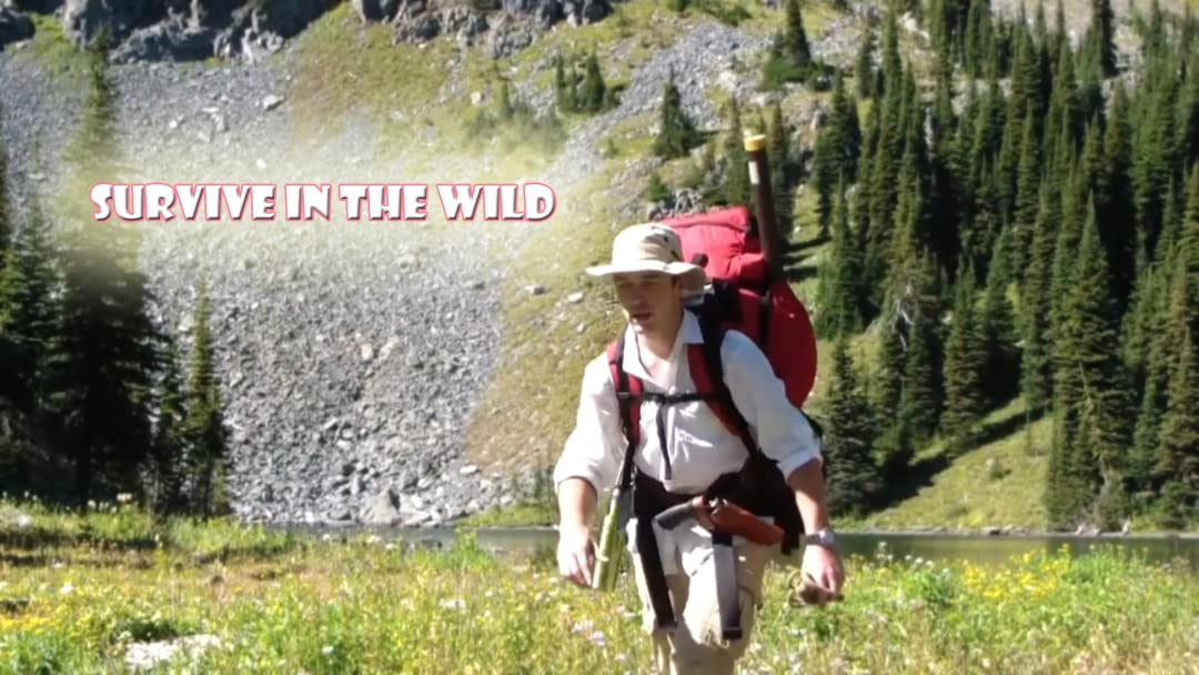 Surviving In The Wild on Amazon Prime Video UK