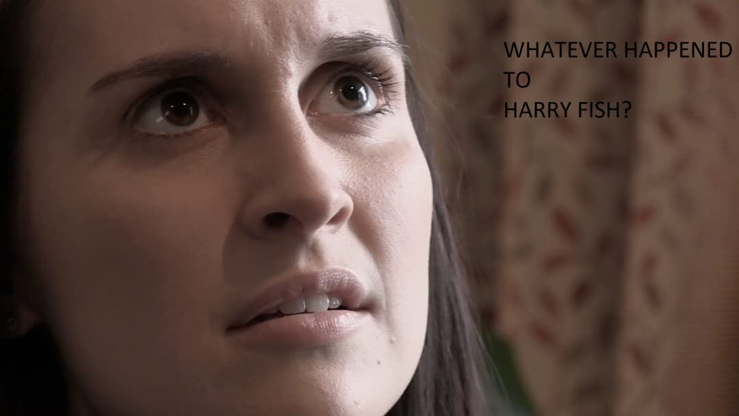 Whatever happened to Harry Fish? on Amazon Prime Instant Video UK