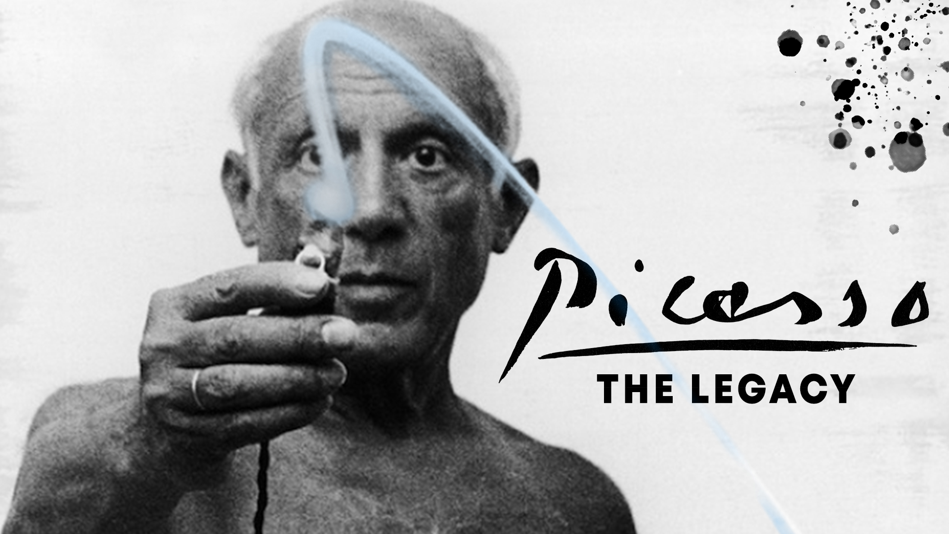Picasso - The Legacy
