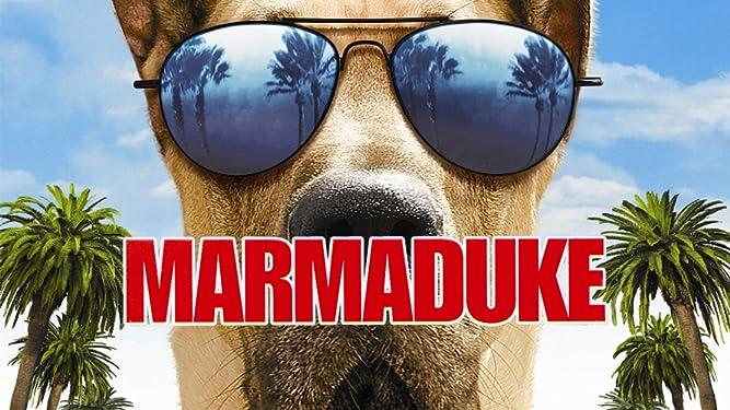 Marmaduke: Life After Film School with Tom Dey