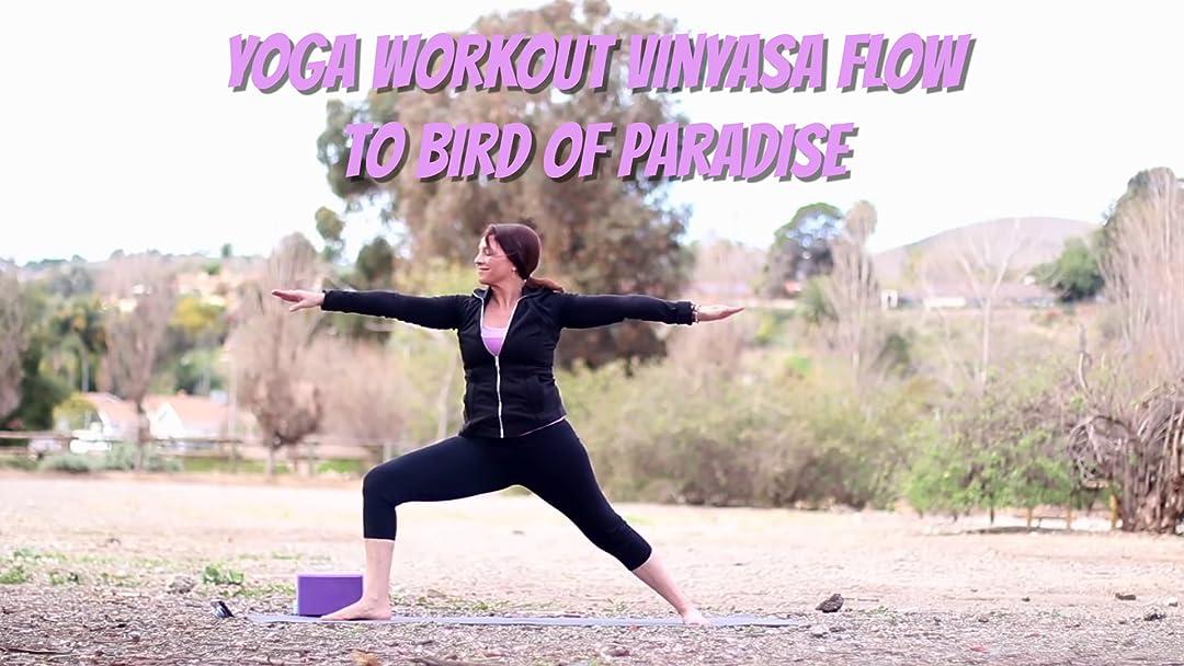 Amazon.com: Watch Yoga Workout Vinyasa Flow to Bird Of ...