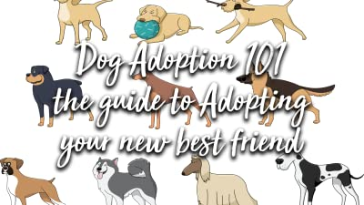 Dog Adoption 101 the guide to Adopting your new best friend