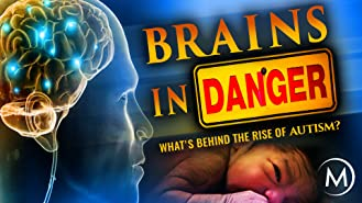 Brains in Danger: What's Behind the Rise of Autism?