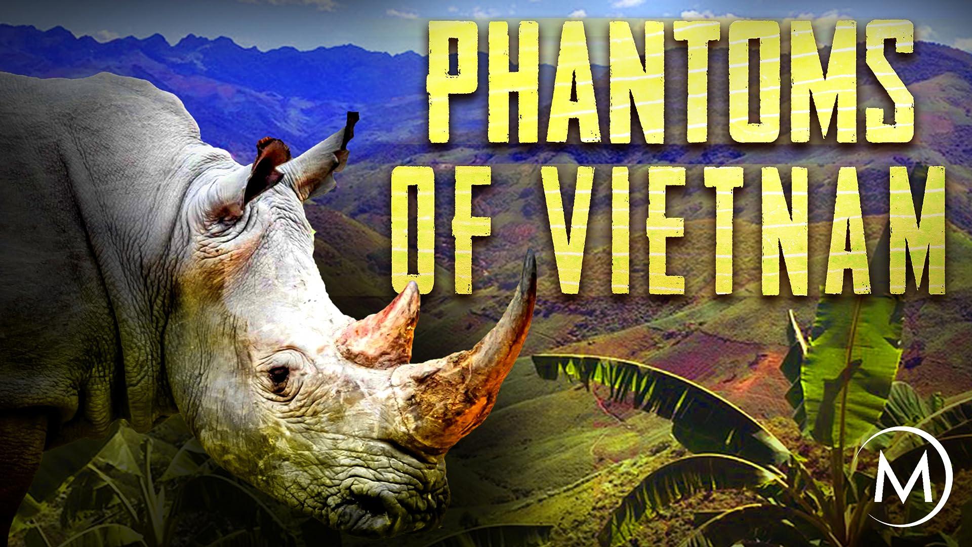 Phantoms of Vietnam