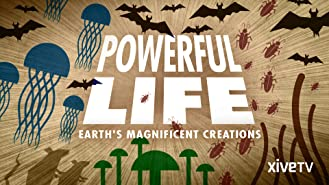 Powerful Life: Earth's Magnificent Creations