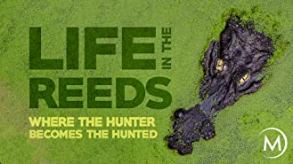 Life in the Reeds: Where the Hunters Become the Hunted