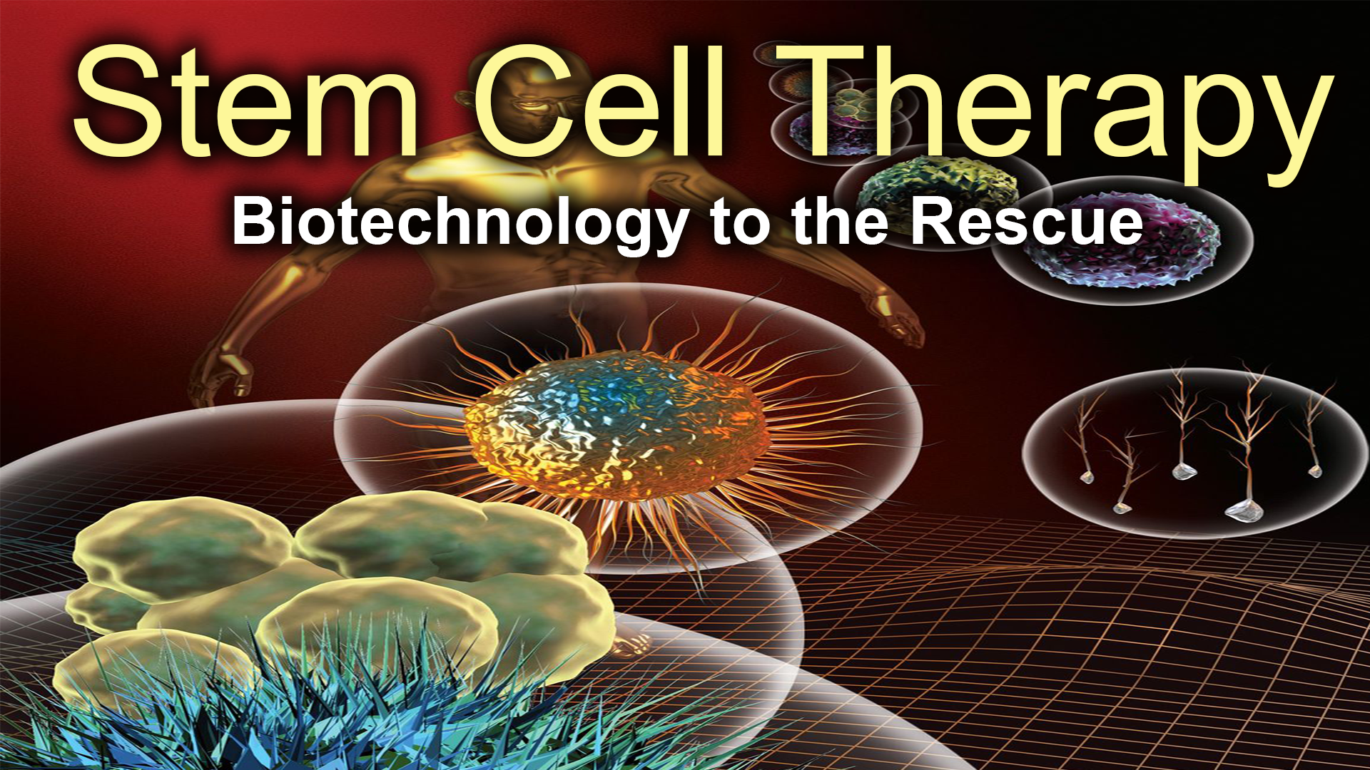 Stem Cell Therapy: Biotechnology to the Rescue
