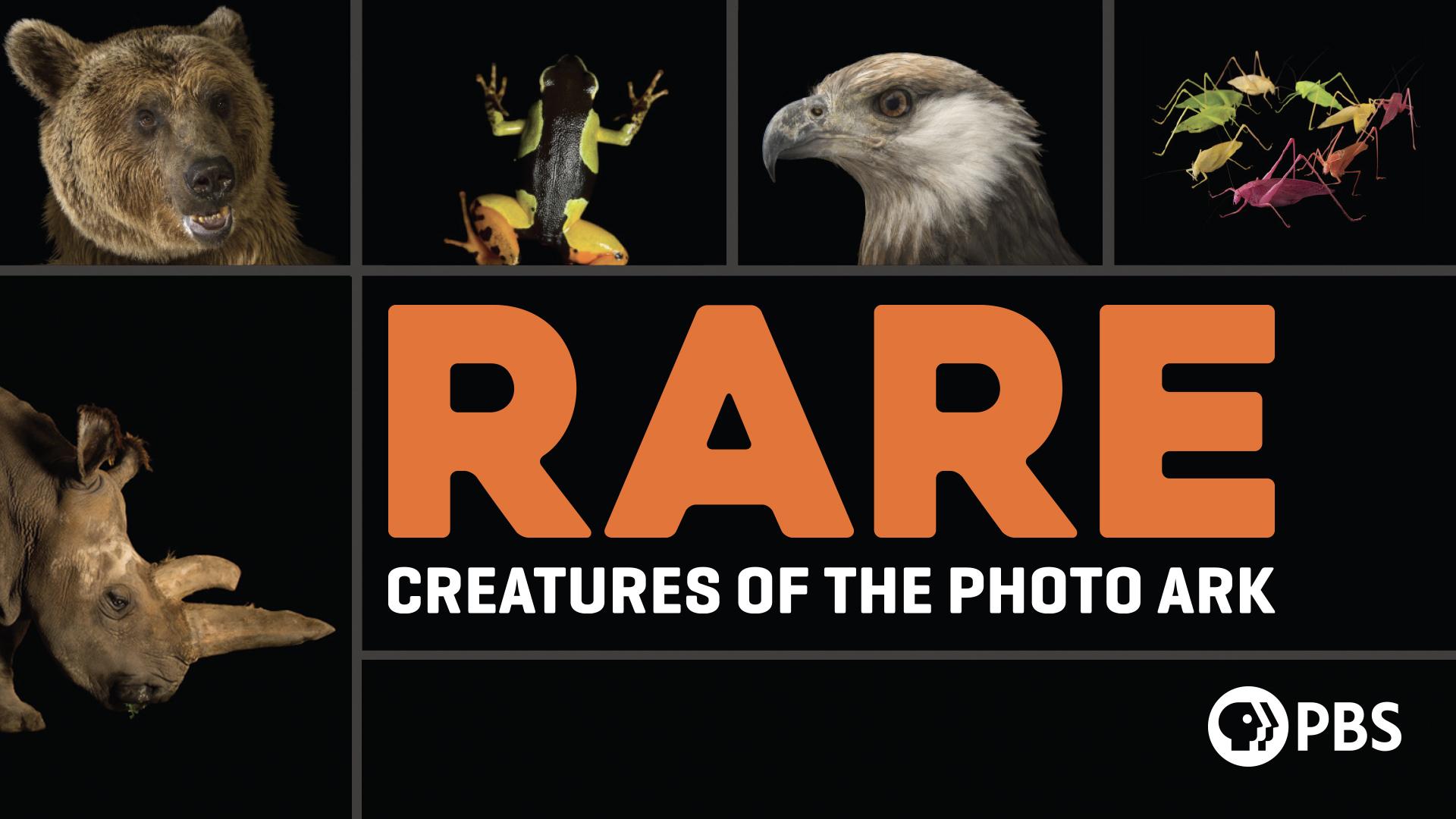 Rare: Creatures of the Photo Ark Season 1