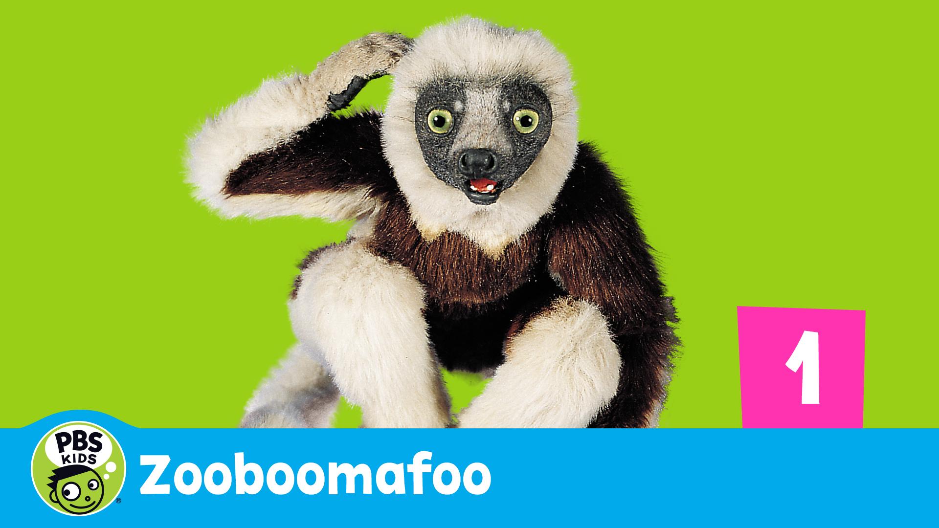 Zoboomafoo Season 1