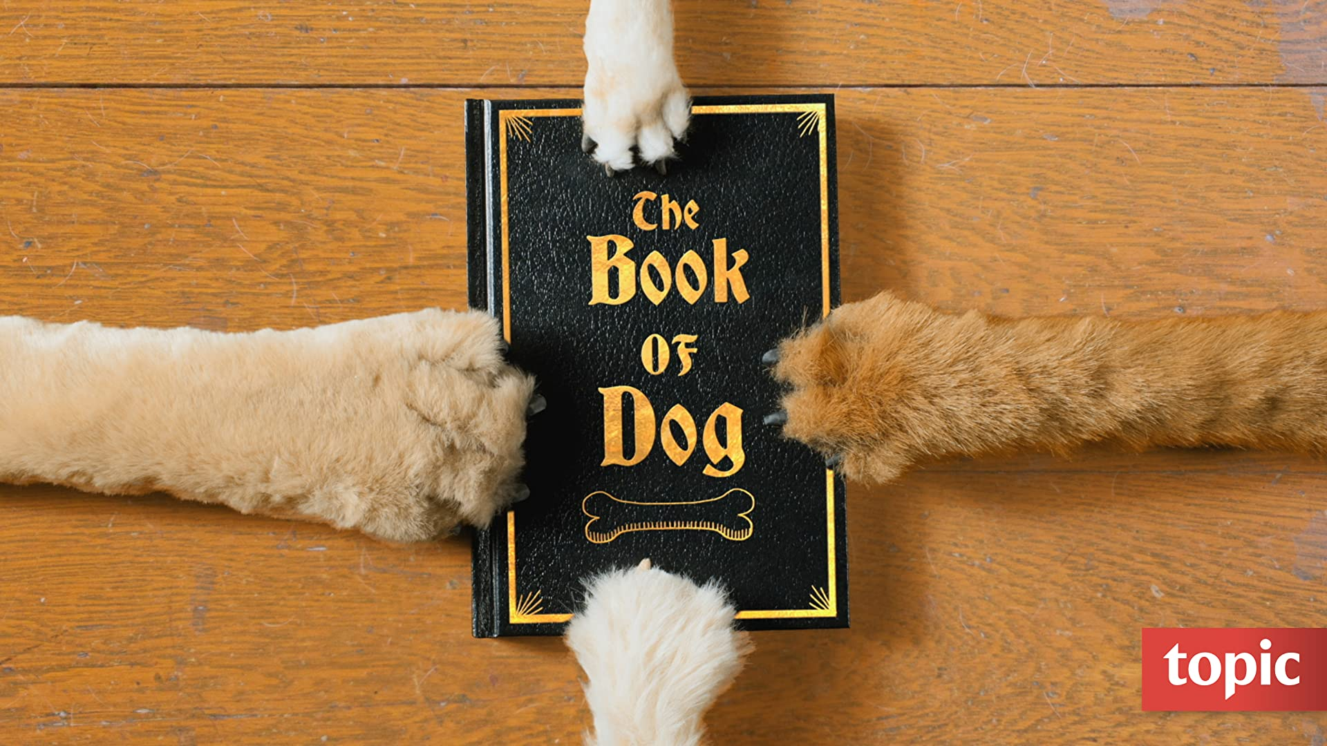 The Book of Dog Season 1