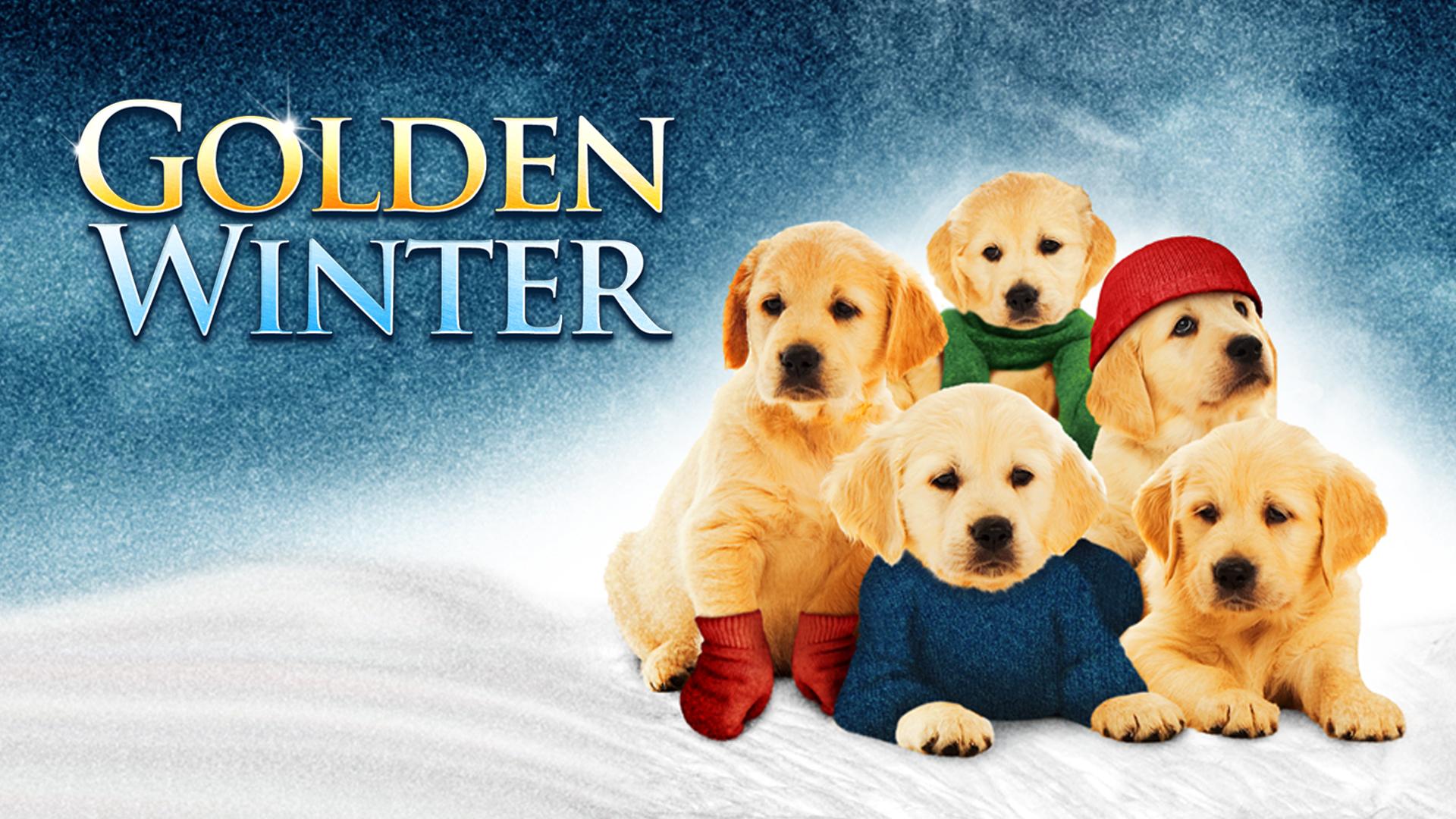 Golden Winter