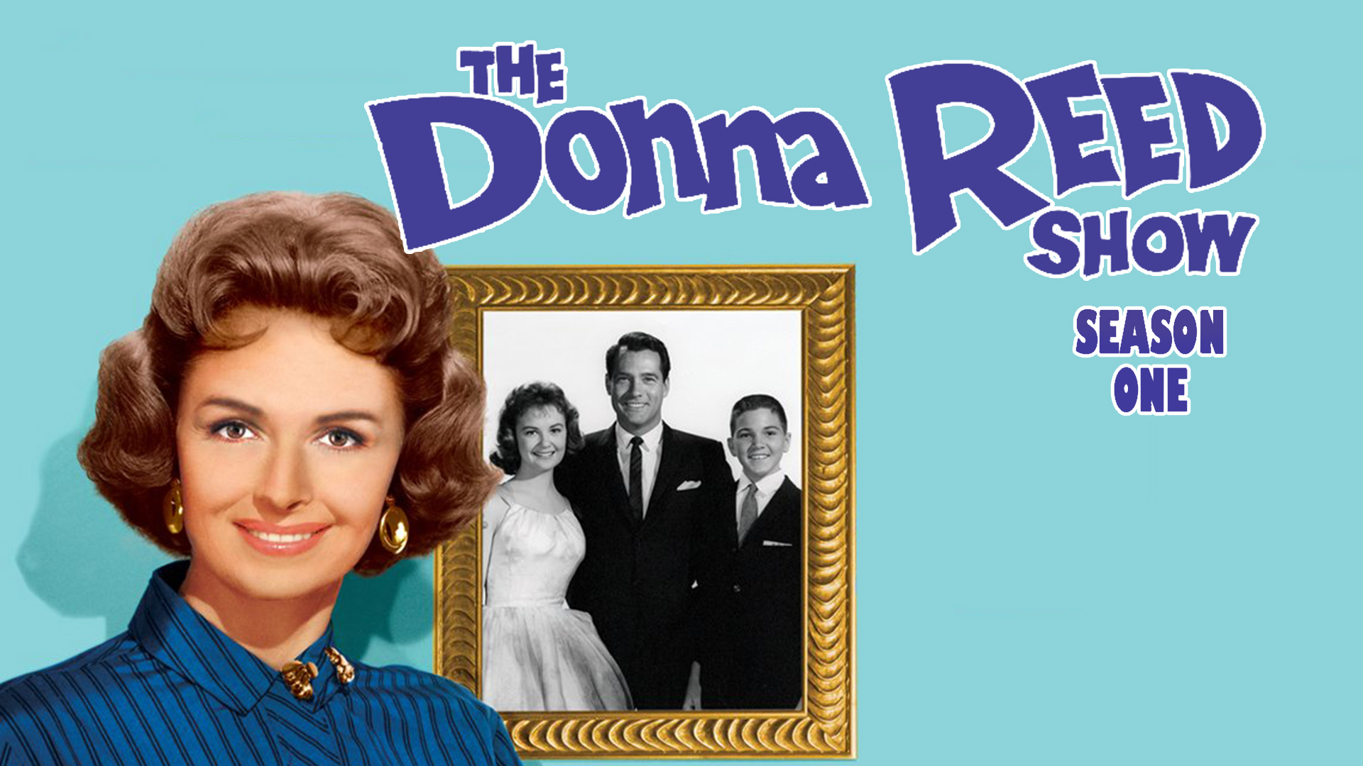The Donna Reed Show Season 1